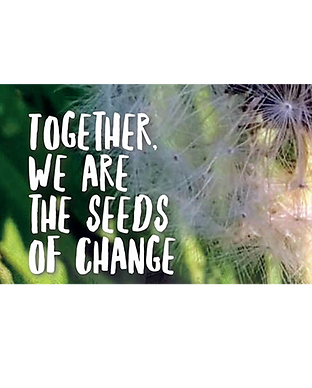 seeds-of-change-2-1.jpg.png