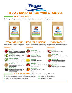 Tego-Family of Products-Flyer-2021.jpg