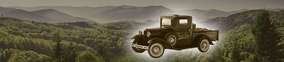 banner-forest-truck-secret-2.jpg