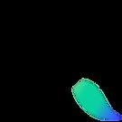 kwast groen en blauw.png