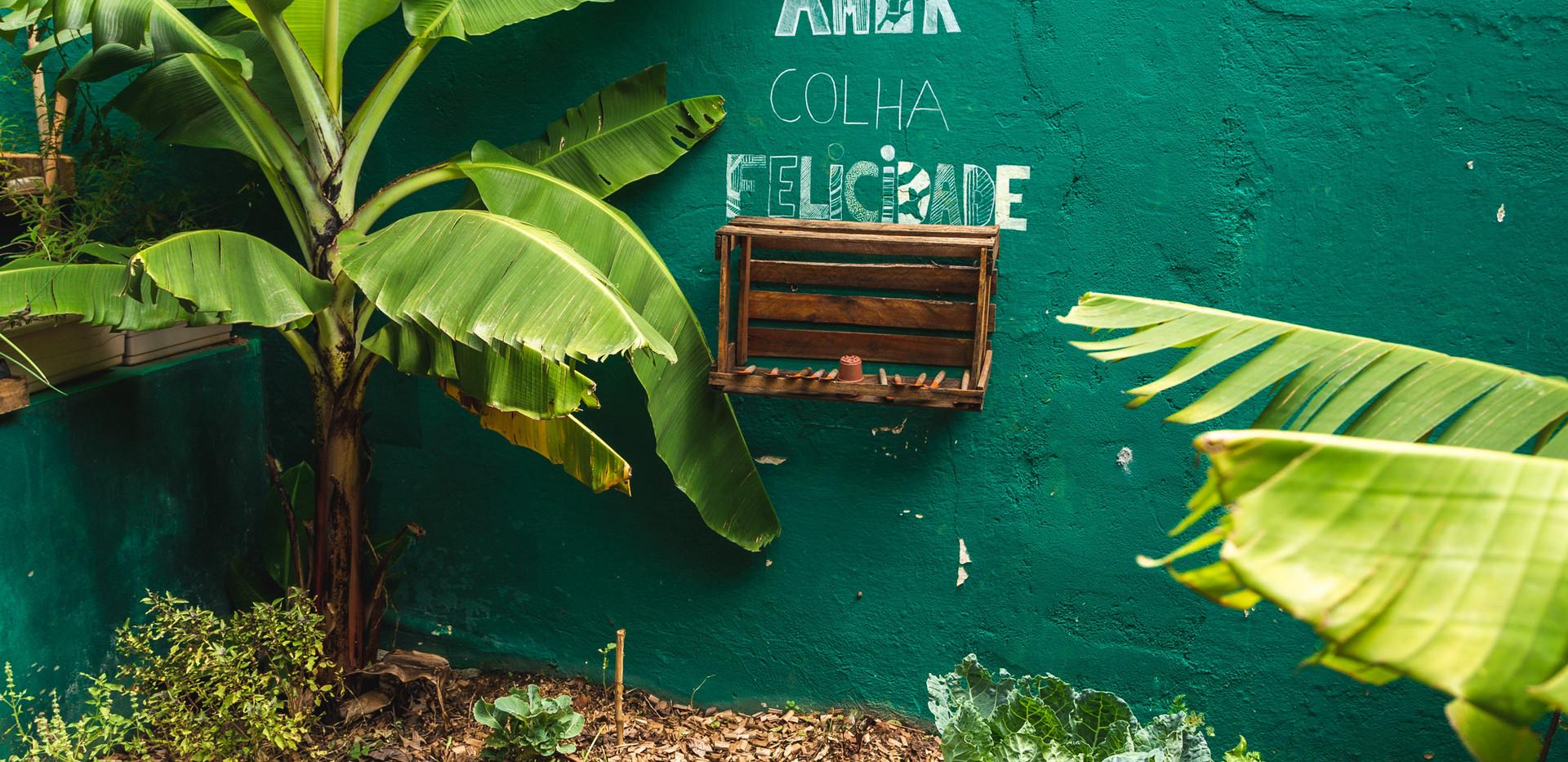 Horta Agroflorestal