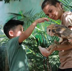 Interação Animal_Flor