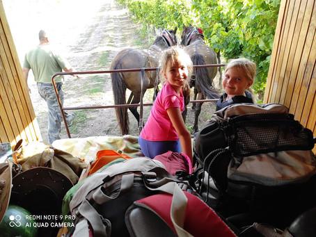 Jak jsme cestovali po východním Slovensku s maringotkou s koňmi