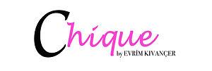 Evrim logo 2.jpg