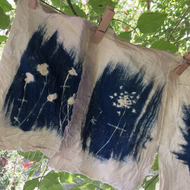 plants collected from our neighbourhood printed with cyanotype technique on textile.