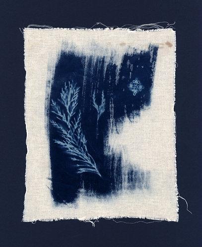 'capturing nature: gardens we dream' cyanotype monoprint on raw fabric