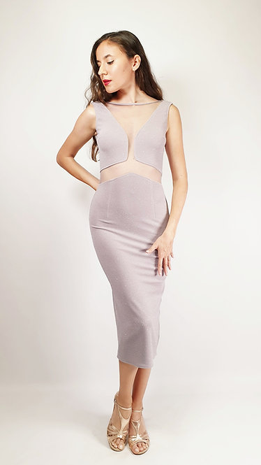 Megaera - Light Grey Transparent Closed Neck Shiny Tango Dress