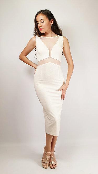 Diana - Ivory Transparent Closed Neck Shiny Tango Dress