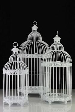 White Wire Birdcage
