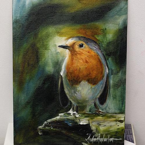 Robin on Canvas Panel by John Anderton