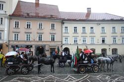 Konjerejsko društvo Barje