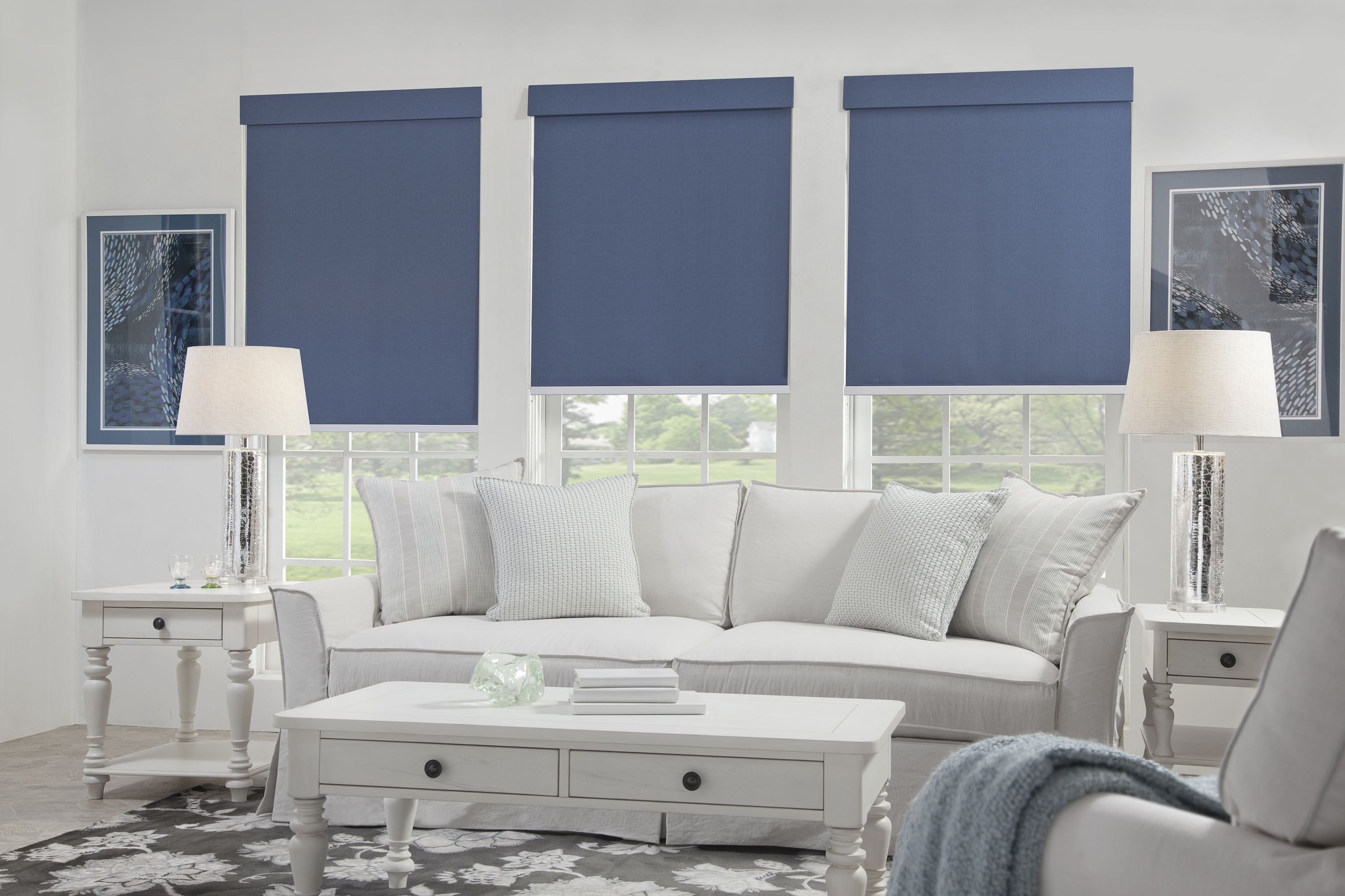Blue Roller Shades