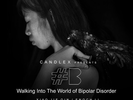 Support Needed | CandleX first art book on Bipolar Disorder