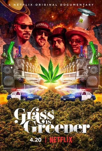 #WorldCannabisActivismDay.....Understanding that the 'Grass is Greener'