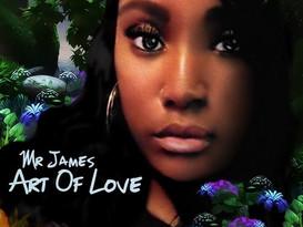 "MIXTAPE REVIEW: Mr. James ""Art of Love"""