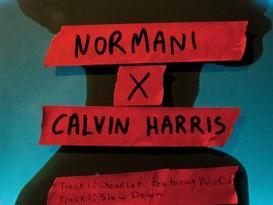 NEW EP ALERT: Normani X Calvin Harris