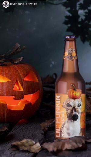 Wooohooo... a lil' punkin on Halloween.
