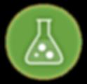 quimicobiologica.png