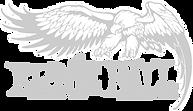 ernie-ball-eagle-black%20hi%20res_edited