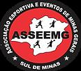 LOGO ASSEEMG PNG.png
