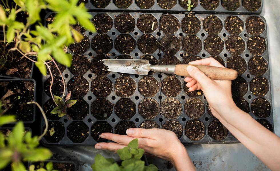 woman-gardening-with-garden-throwelpng