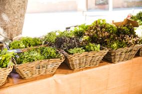wicker-basket-fresh-leafy-vegetables-arr