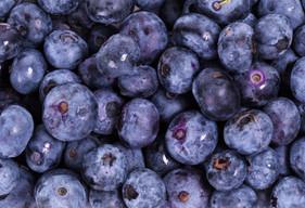 delicious-blueberry-backgroundjpg