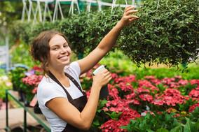 florist-woman-working-greenhouse-plants