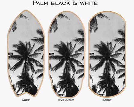 Palm Black & White