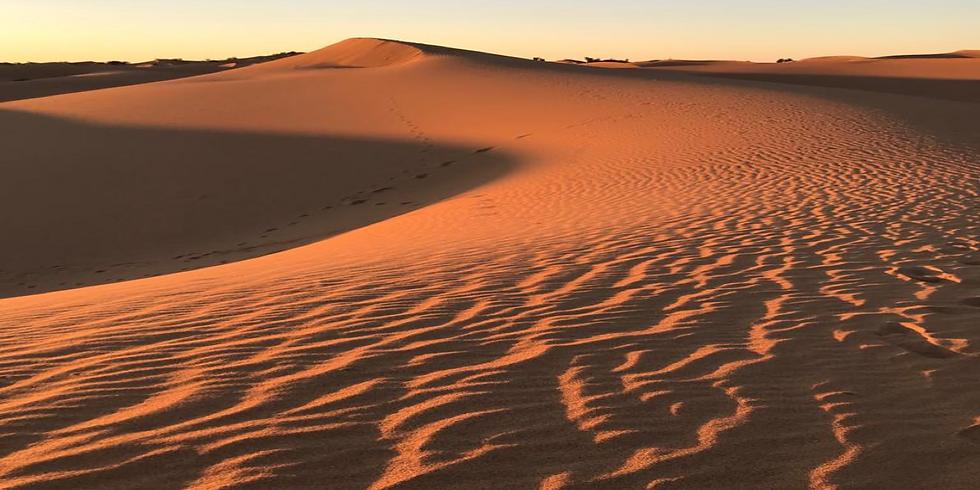 Leiderschapsprogramma Marokko
