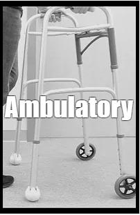 Ambulatory Senior