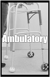 Ambulatory Transportation Service