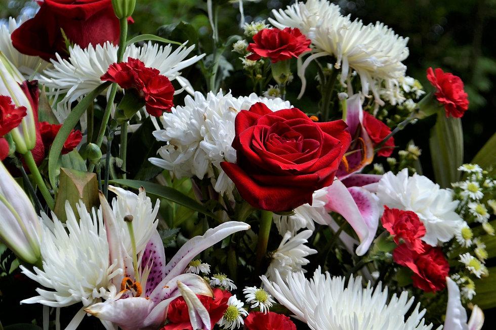 flower-3285506_1920.jpg
