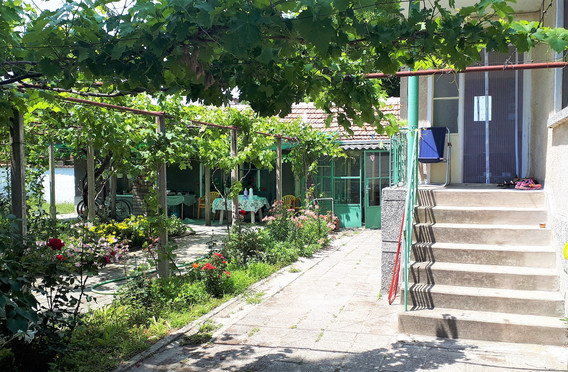 IMAGO Houses and Front Yard.jpg