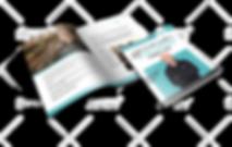 mockup_ebook.png