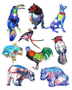 animalsmarker_net.jpg