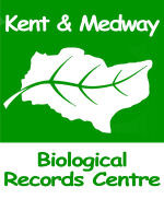 KMBRC launches new, updated website!