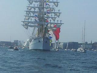 The Tall Ships Races Aarhus.jpg