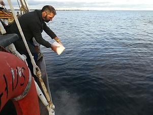 Bisættelse på havet - Aarhus Sail Event