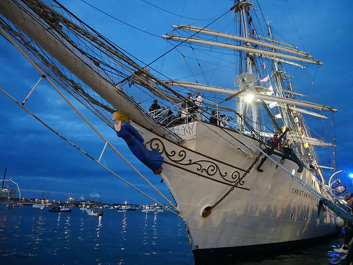 Guidet Havnerundfart til The Tall Ships Races