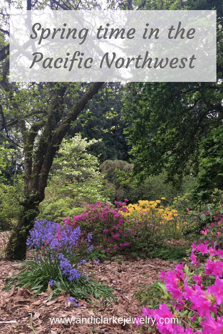 Blog post on public gardens in Seattle rhododendrons, azaleas