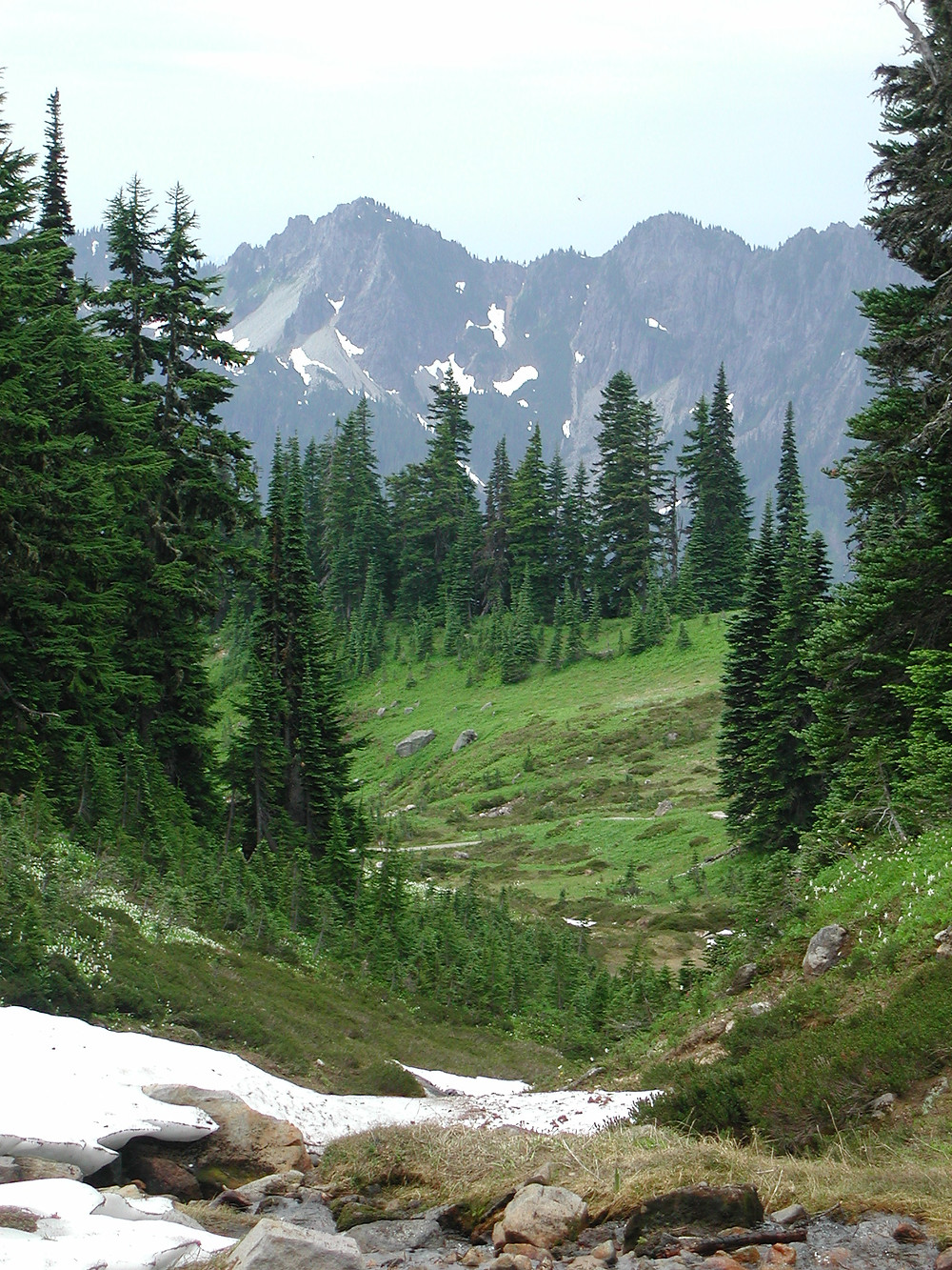 Paradise hike, Mt Rainier Park