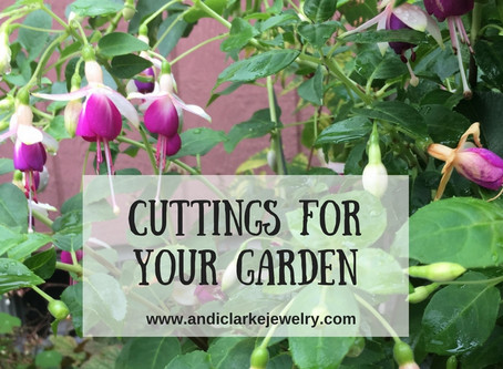 Free plants for your garden