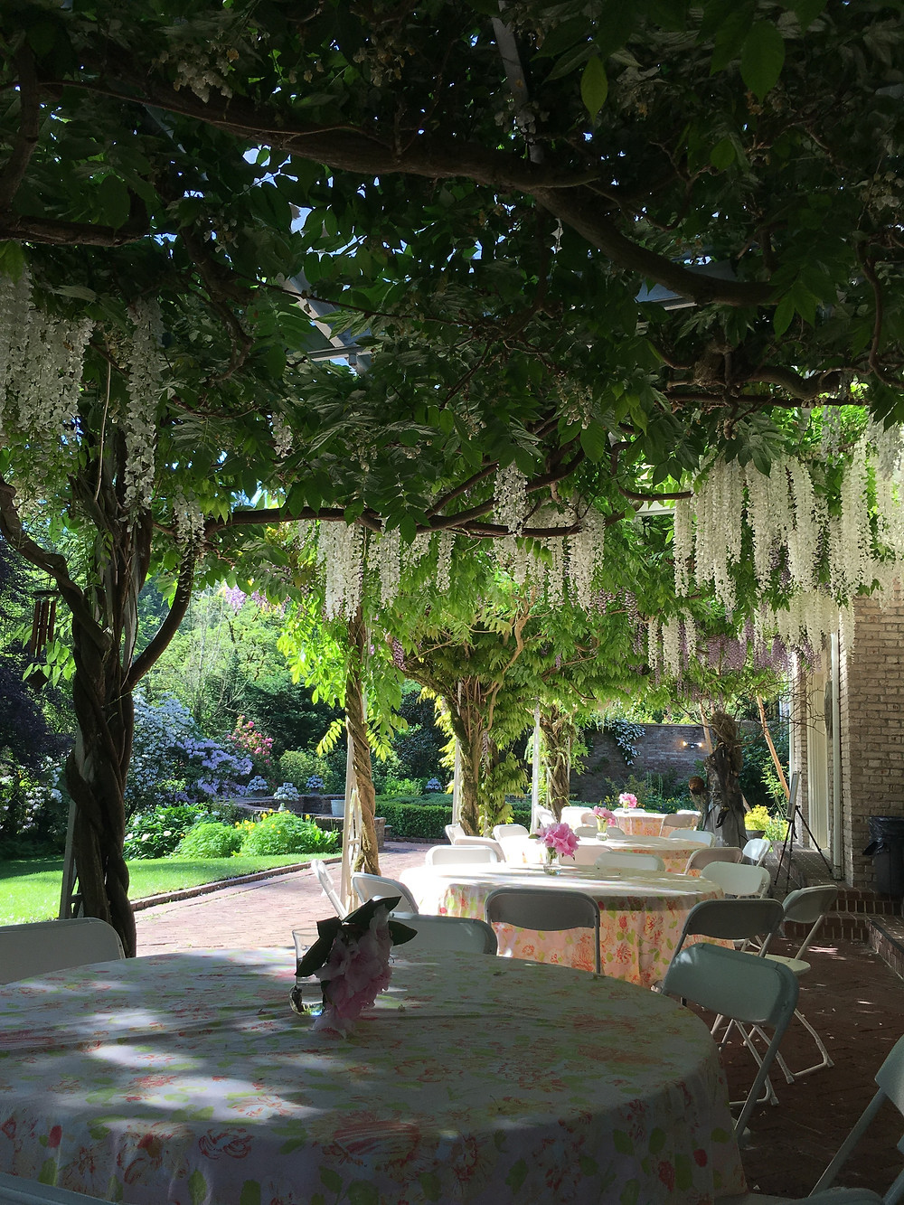 wisteria covered patio at Lakewold Gardens