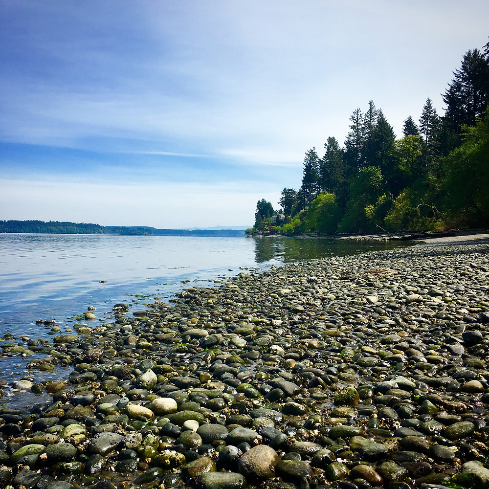 Pebbly beach on the Puget Sound - Tolmie State Park