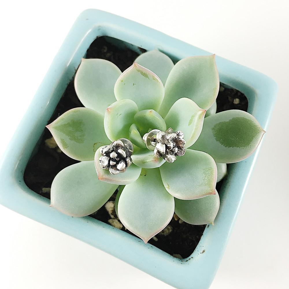 succulent stud earrings, PMC jewelry earrings, succulent jewelry, silver flower earrings