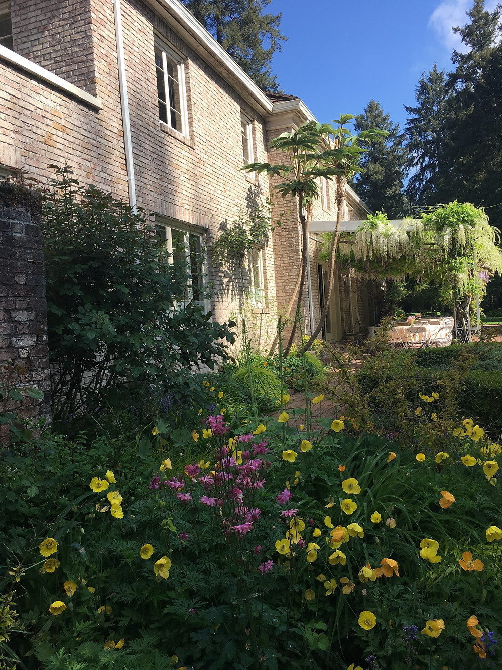 Lakewold Gardens with wisteria and spring flowers blooming