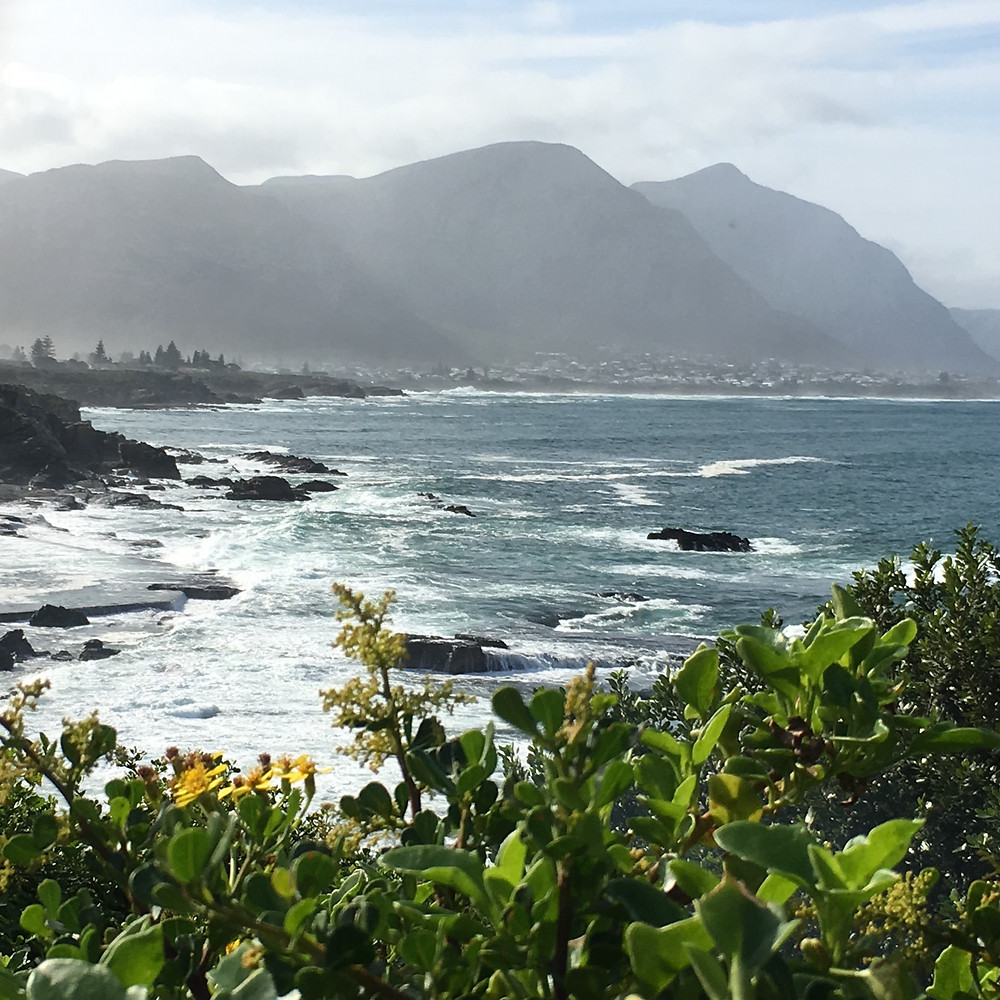 Hermanus is scenic and you may see whales here too.