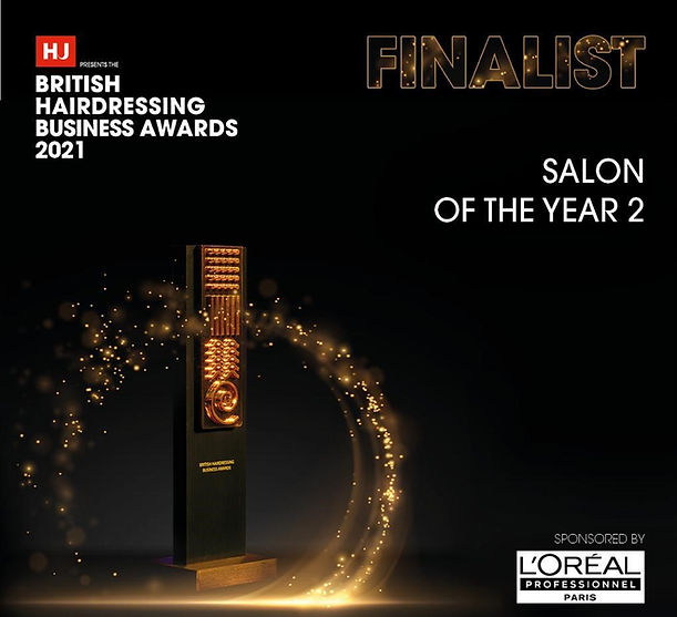 salon of the year image cropped.jpg