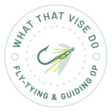 WTVD_Logo Files_Full Color_Primary Logo.